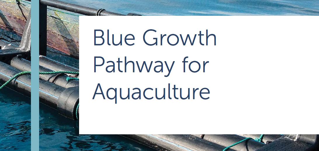 Final_Aquaculture